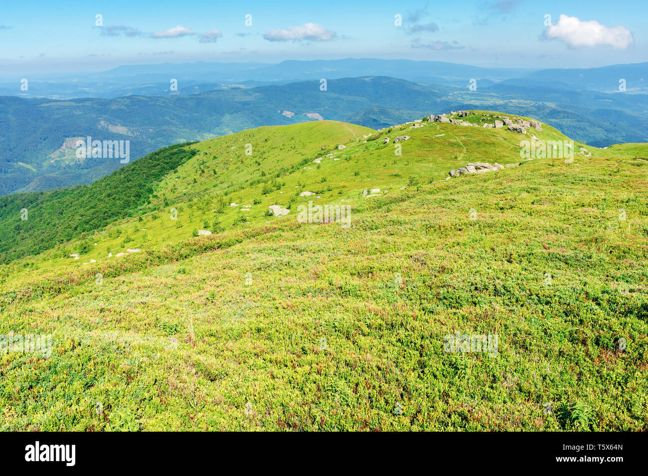 beautiful mountain landscape in summertime. green grassy hills with bunch of rocks in the distance. path through the meadow. sunny weather with fluffy - Stock Image