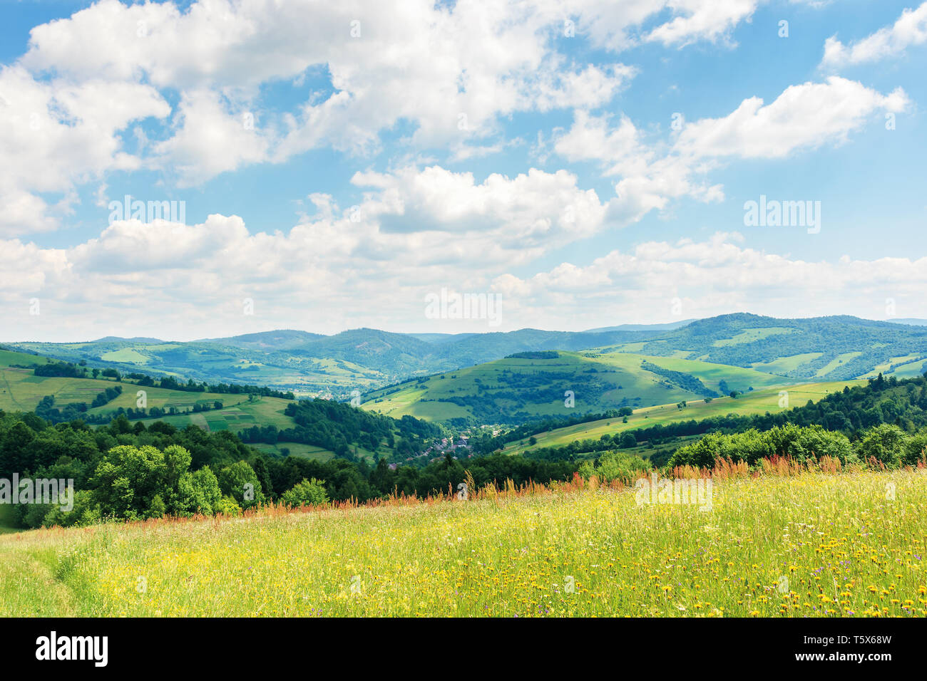 beautiful summer countryside in mountains. wonderful sunny day scenery. grassy rural fields and meadows with wild herbs. hills and mountains in the di - Stock Image