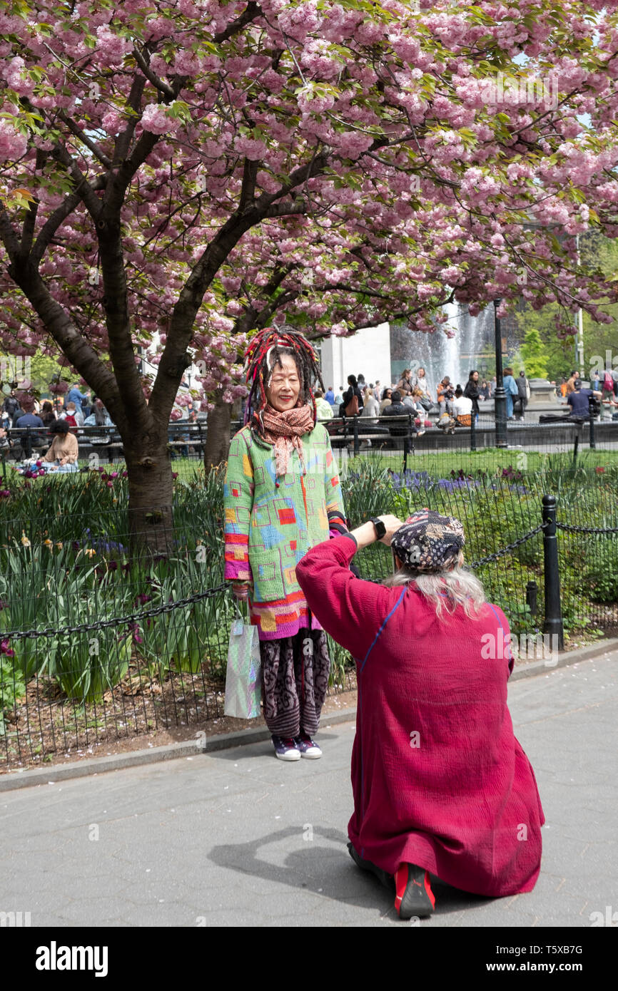 A man takes a cell phone photo of his Asian companion under a Cherry Blossom tree in Washington Square Park in Greenwich Village, New York City. Stock Photo
