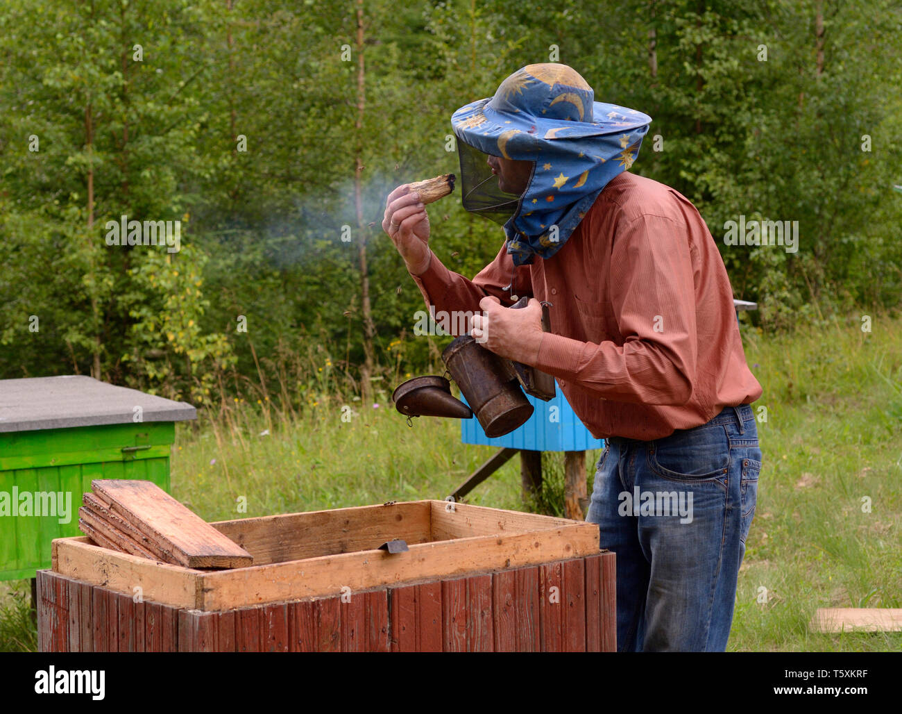 Apiary in the Carpathians. Beekeeper fanning the piece of wood for the smoker for fumigating bees.July 18, 2018. Lugi village, Ukraine - Stock Image