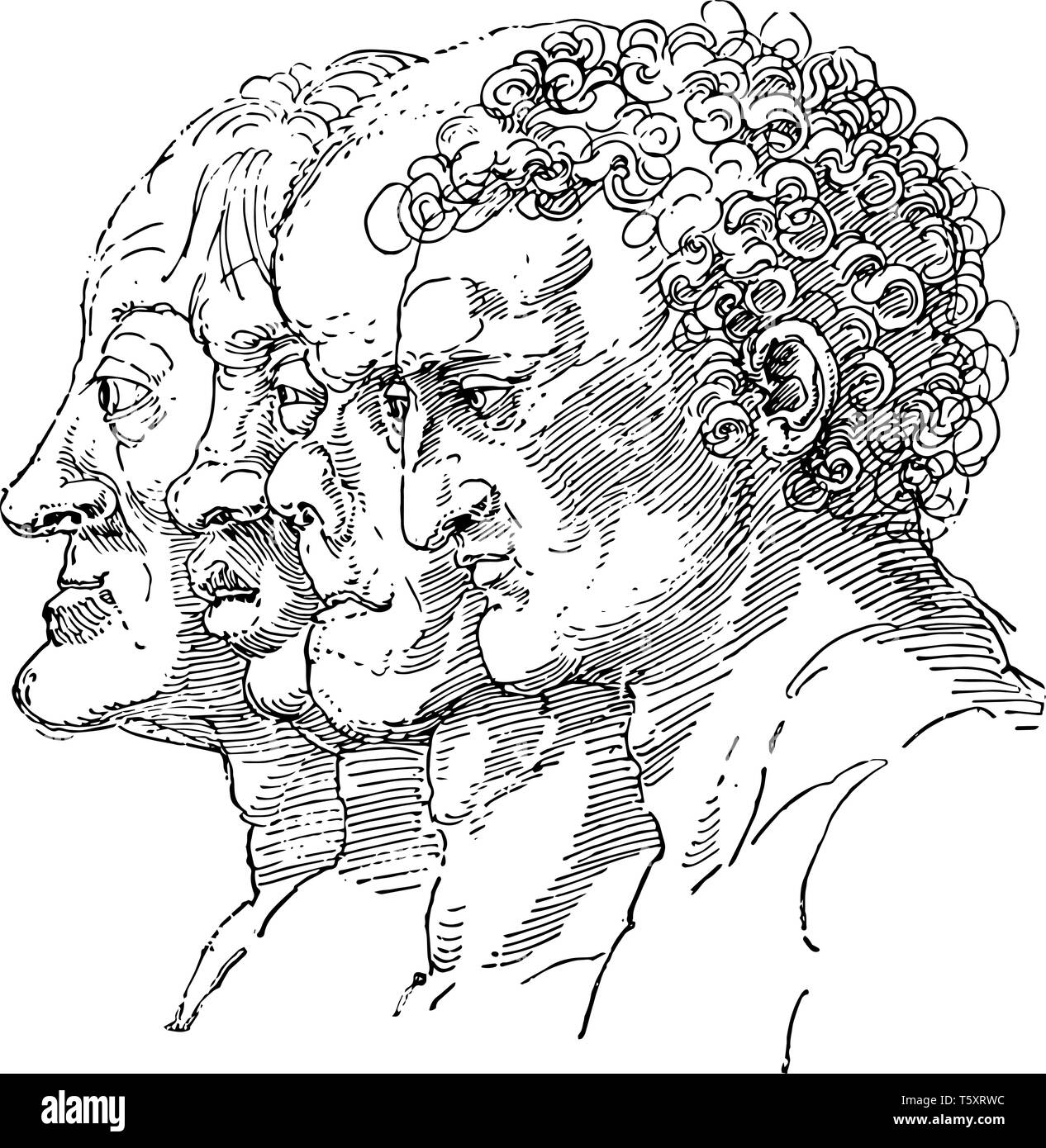 Study of the Varieties of Facial Types by German artist Albrecht Dürer, personality from a person's outer appearance, central in the expression of emo - Stock Vector