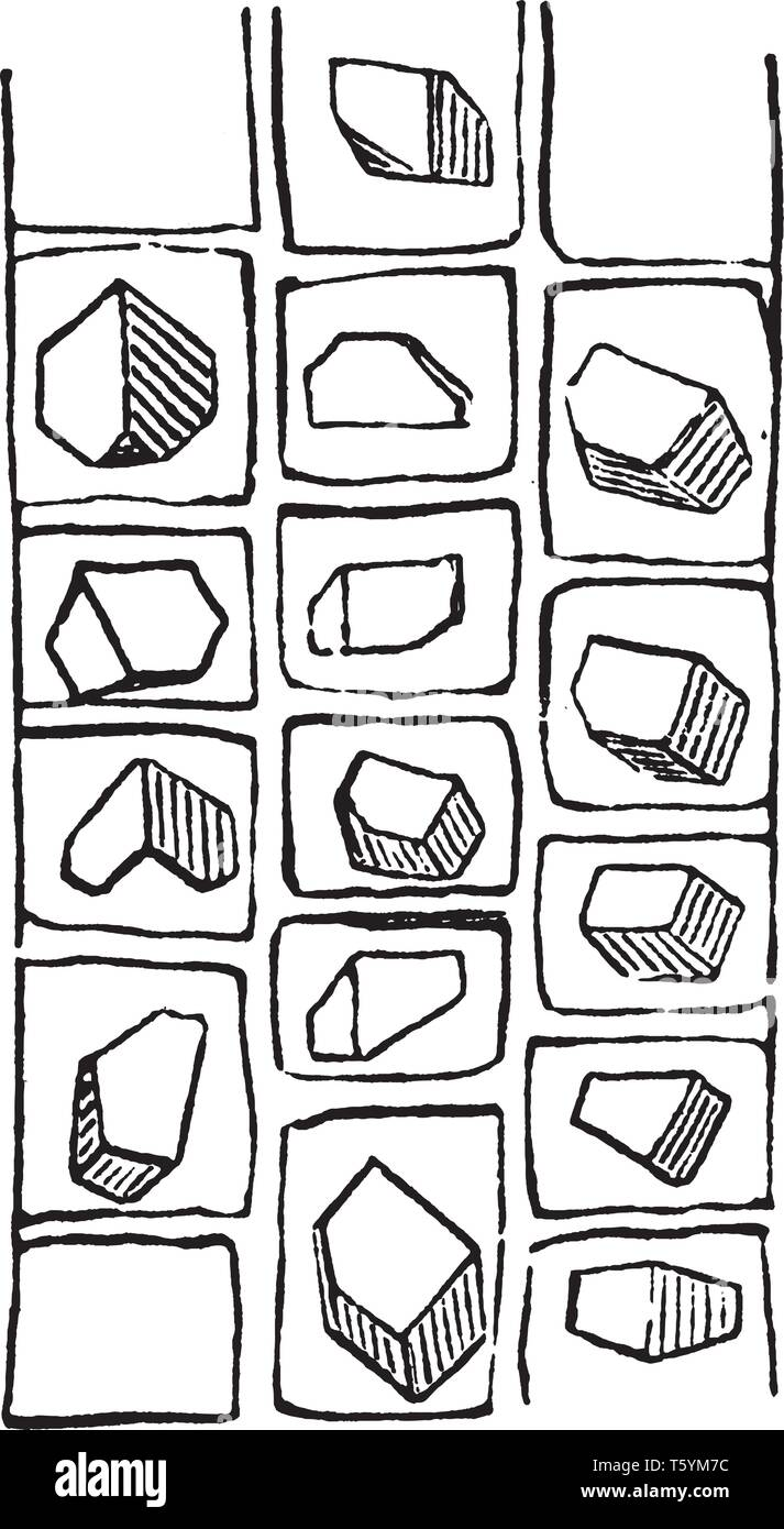 This is the crystals of the inner bark of the locust. This is also used as firewood and it is easy to split. It has 3 dimensional cubical structures,  - Stock Vector