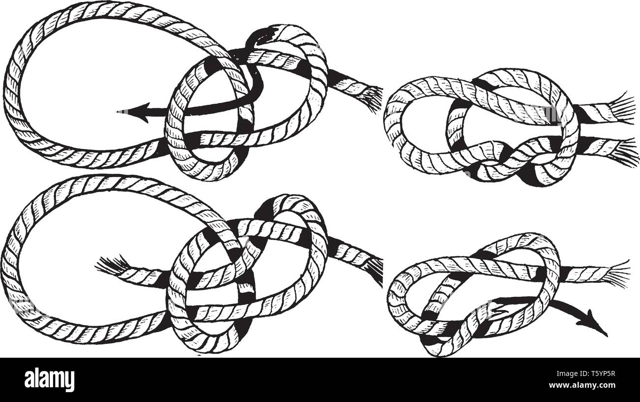 Miraculous Line Drawing Of Bowline Knot Stock Photos Line Drawing Of Bowline Wiring Database Ilarigelartorg