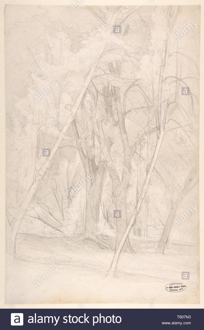 Henri-Joseph Harpignies-Forest Interior - Stock Image