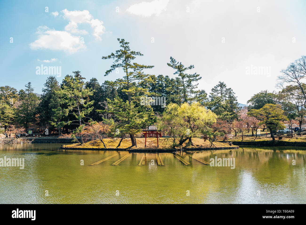 Torii gate on pond at Todai-ji temple in Nara, Japan - Stock Image
