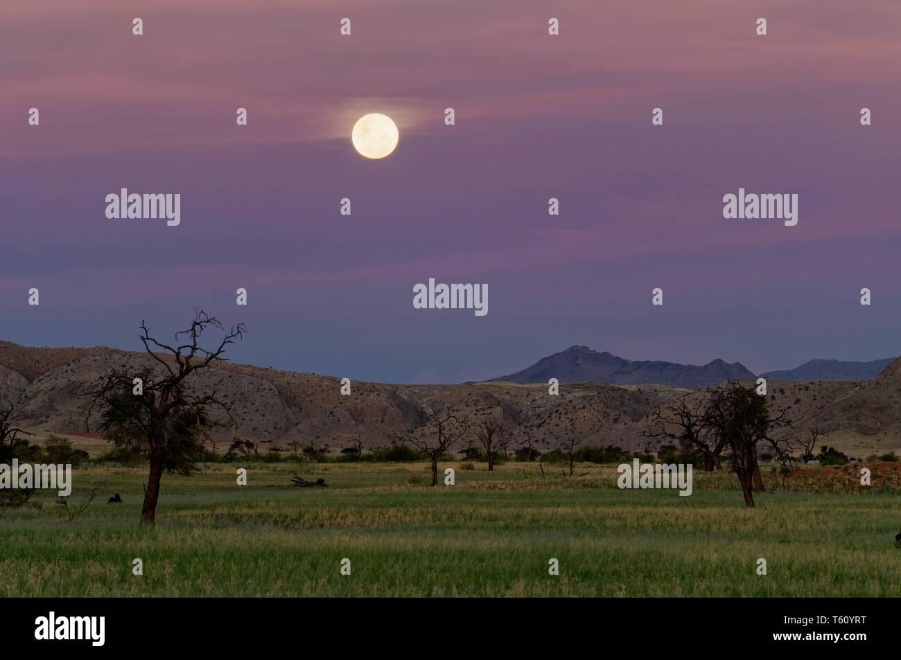 Moon over Namib Desert in Tsondab Valley Scenic Reserve District Windhoek Namibia - Stock Image