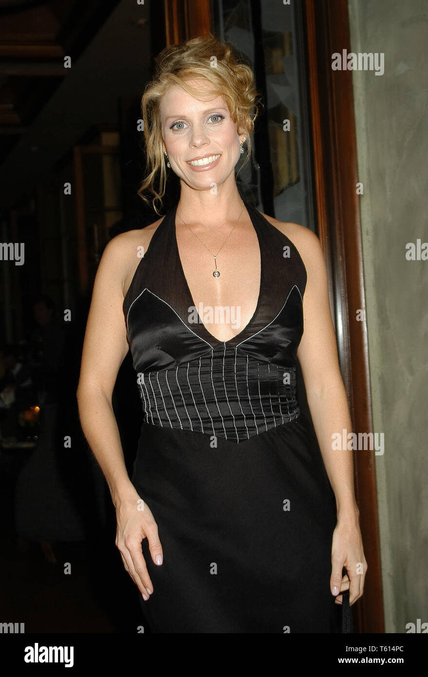 Cheryl Hines at the Academy of Television Arts & Sciences dinner honoring the 55th Annual Primetime Emmy Awards Nominees for Outstanding Performing Talent at Spagos in Beverly Hills, CA. The event took place on Thursday, September 18, 2003. Photo by: SBM / PictureLux  File Reference # 33790_1529SBMPLX - Stock Image