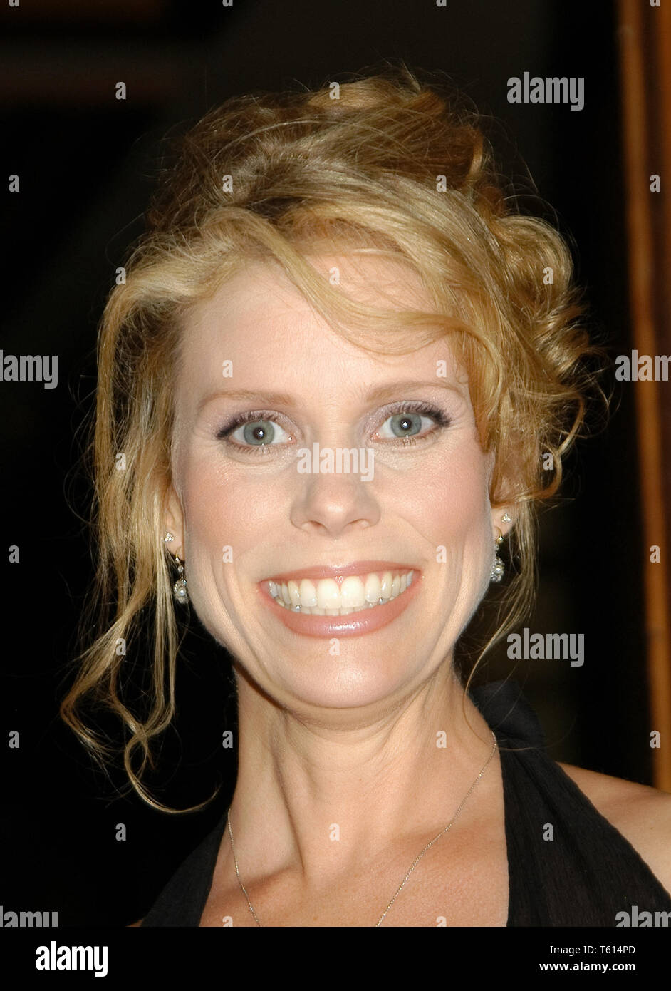 Cheryl Hines at the Academy of Television Arts & Sciences dinner honoring the 55th Annual Primetime Emmy Awards Nominees for Outstanding Performing Talent at Spagos in Beverly Hills, CA. The event took place on Thursday, September 18, 2003. Photo by: SBM / PictureLux  File Reference # 33790_1528SBMPLX - Stock Image