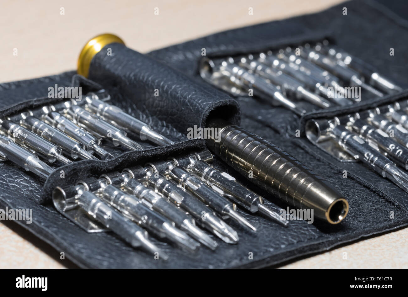 Precision screwdriver set including several torx bits in a wallet. - Stock Image