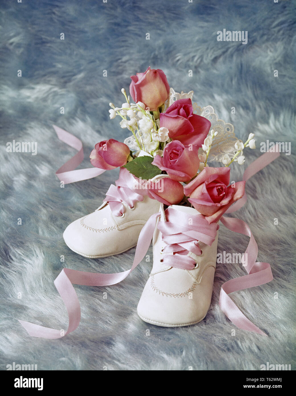 1970s 1980s BIRTHDAY STILL LIFE OF WHITE BABY SHOES HOLDING MINIATURE PINK ROSES AND BABY'S BREATH FLOWERS ON BLUE BACKGROUND - kf8897 PHT001 HARS OLD FASHIONED Stock Photo