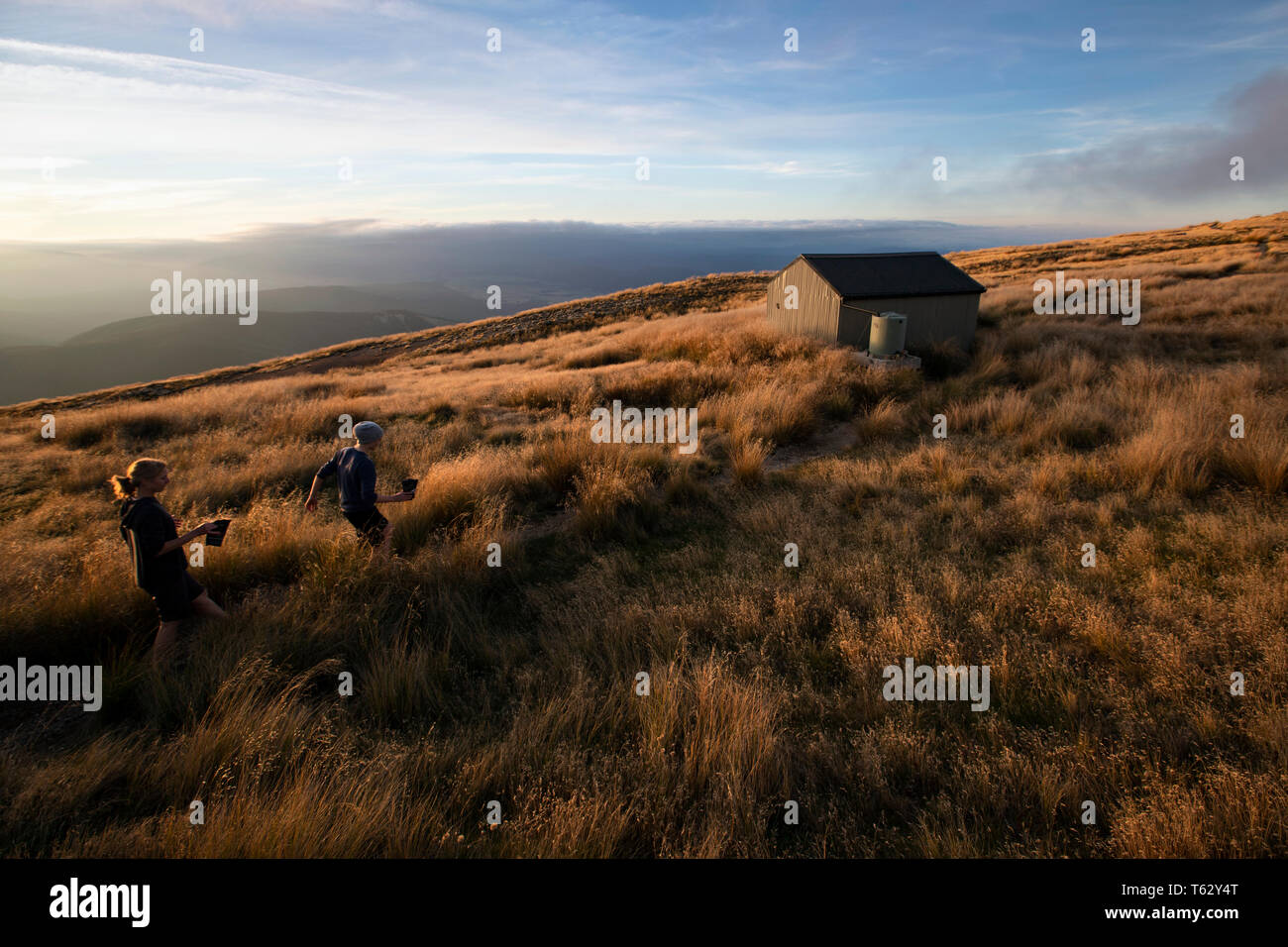 Picture by Tim Cuff - 23/24 March 2018 - Tramping on Mount Roberts, Nelson, New Zealand Stock Photo