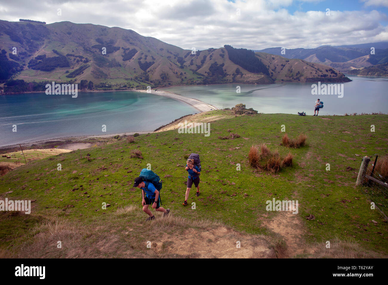 Walking at Cable Bay with Pepin Island in the background, Nelson, New Zealand Stock Photo