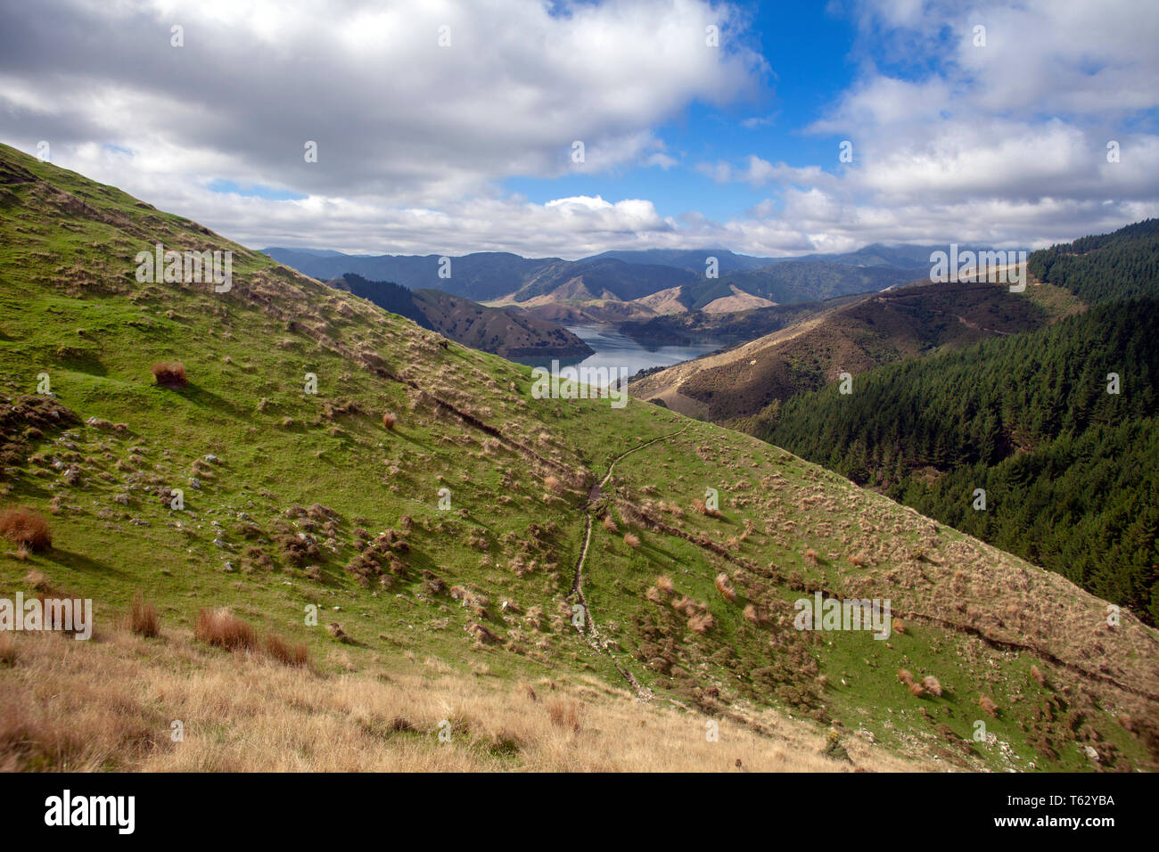 Looking north east towards Pepin Island from hills above Cable Bay, Nelson, New Zealand Stock Photo