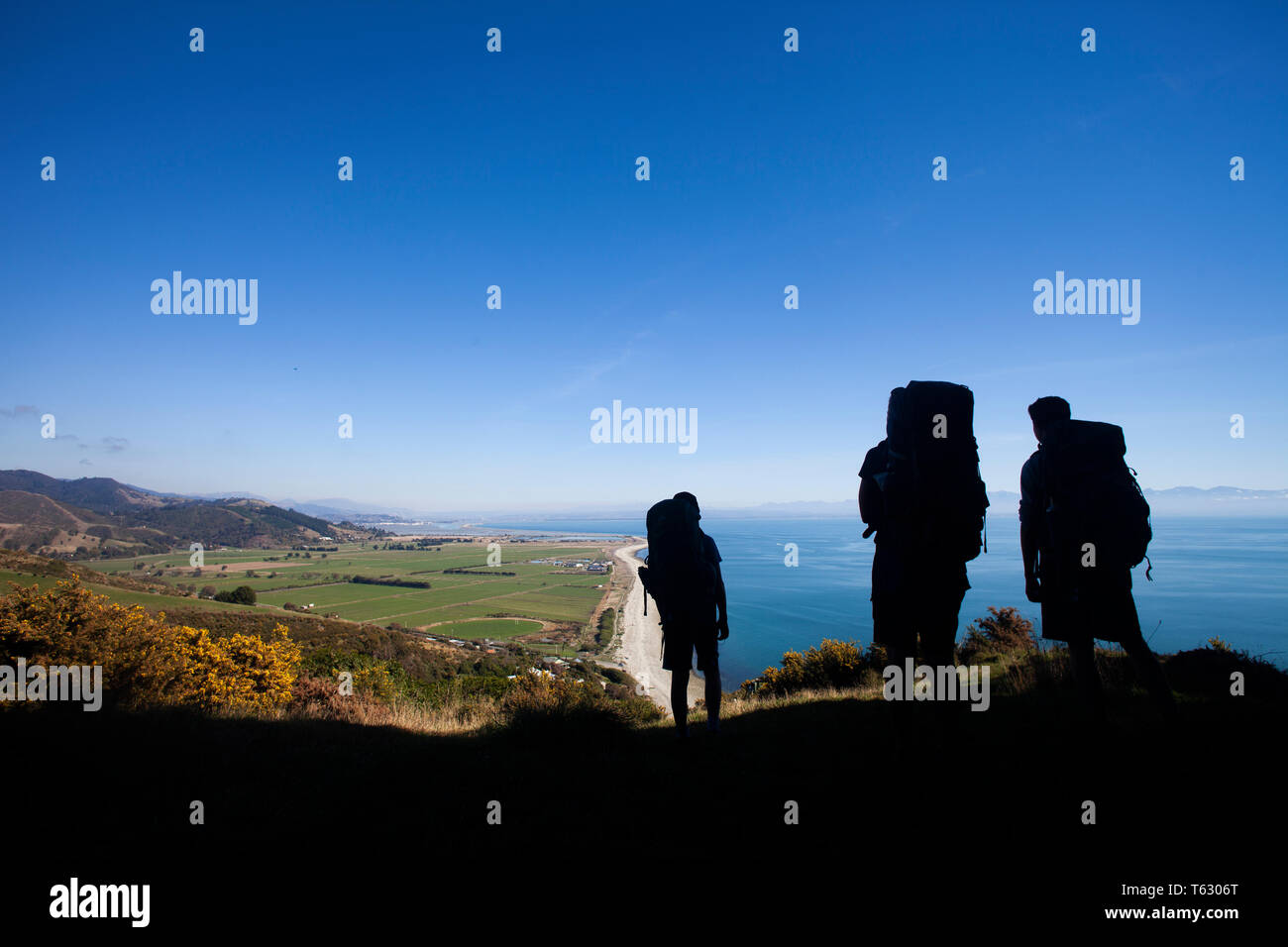 Hikers above the Glen, Nelson, New Zealand Stock Photo