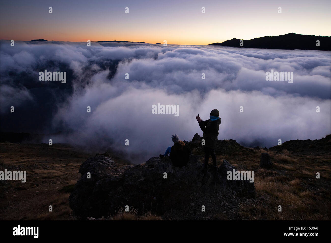 Picture by Tim Cuff - 23/24 March 2018 - Tramping on Mount Roberts, Nelson, New Zealand - Stock Image