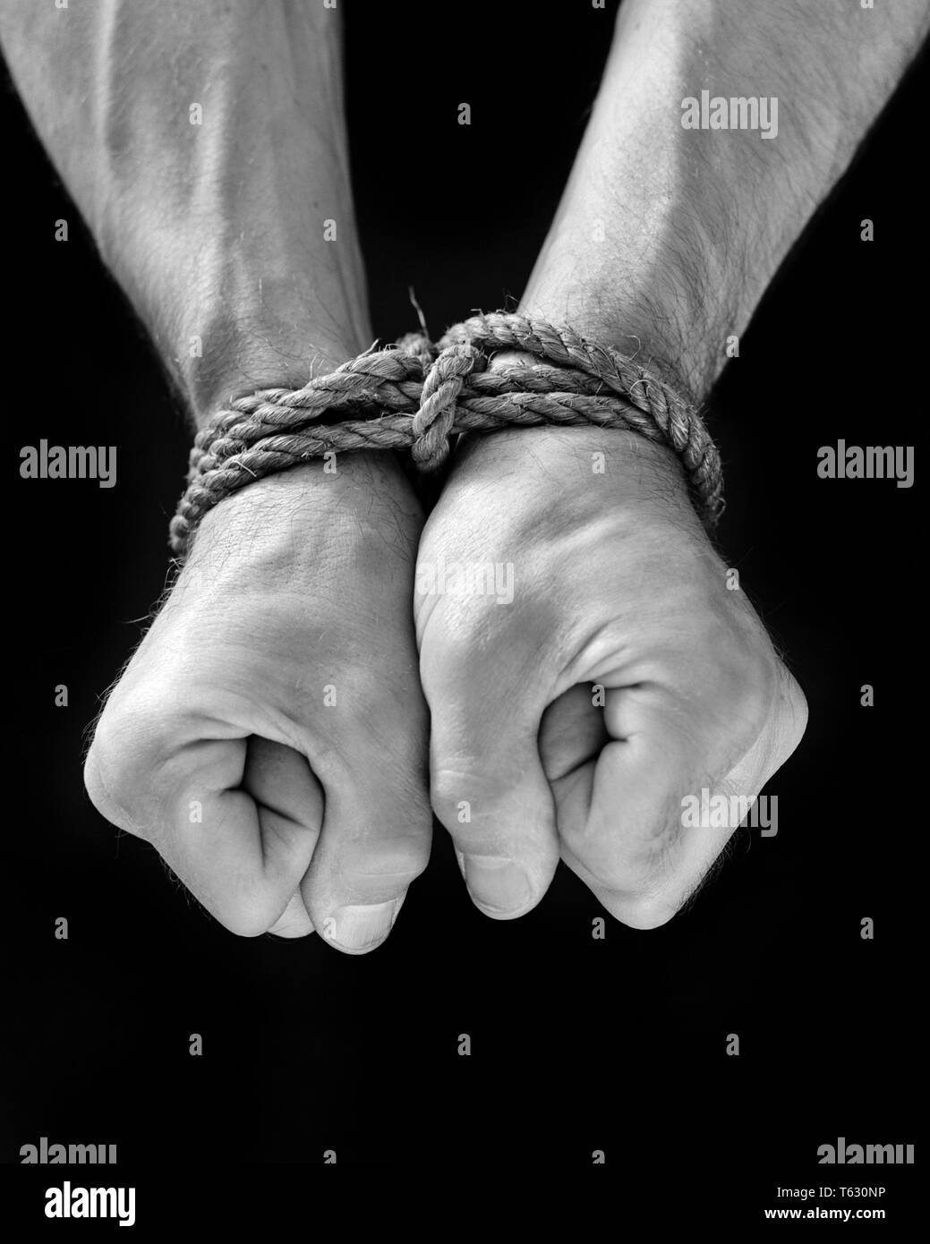 1940s male hands clinched in fists tied at wrist with heavy rope captive prisoner - s9422 HAR001 HARS PRISONER AT IN FISTS TIED UP CONCEPT CONCEPTUAL ESCAPE HOSTAGE CLINCHED SYMBOLIC CAPTIVE CONCEPTS BLACK AND WHITE BOUND CAPTURED CAUCASIAN ETHNICITY CONTROLLED HANDS ONLY HAR001 OLD FASHIONED REPRESENTATION RESTRAINED - Stock Image