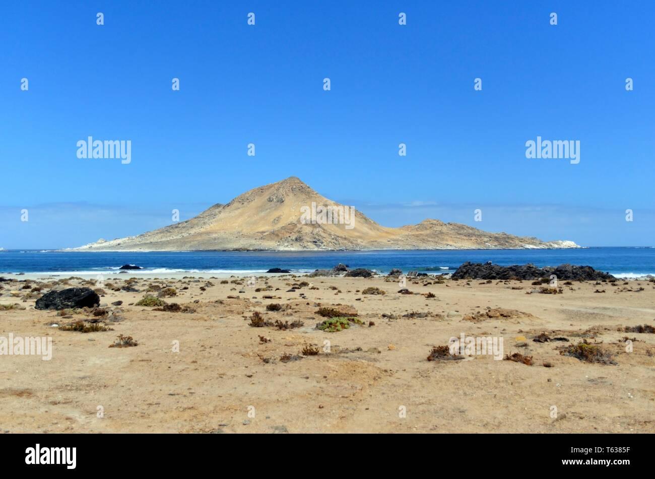 Pan de Azucar Island, Chile, Southamerica - Stock Image