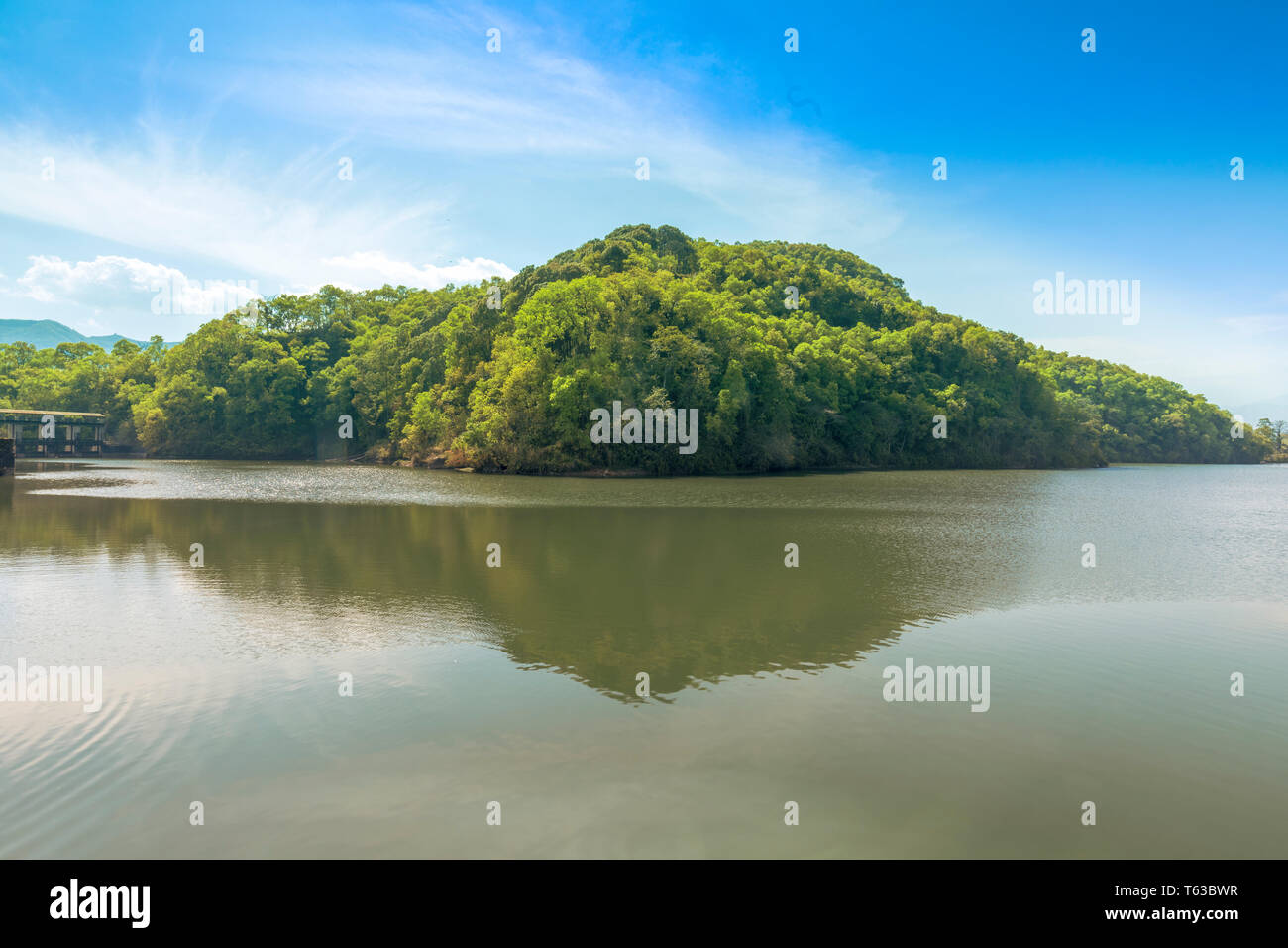Phewa Lake reflecting trees in water,Pokhara Nepal - Stock Image