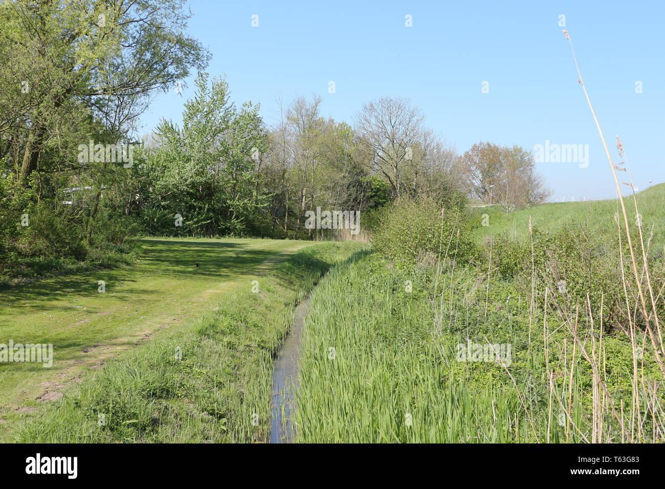 Hinterm Deich in Brouwershaven in der Provinz Zeeland in Holland - Stock Image