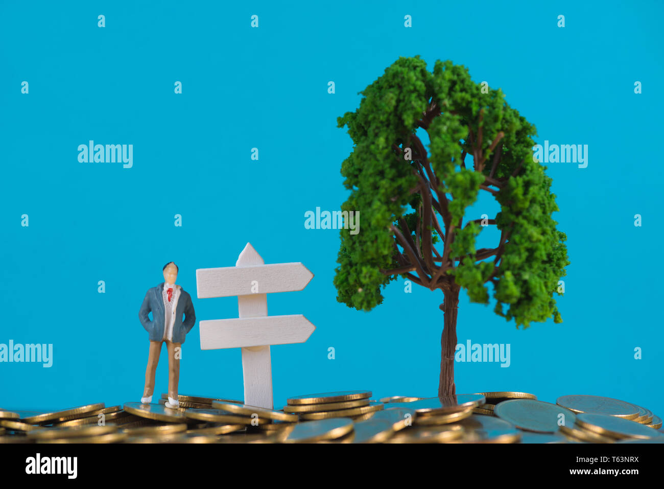 Figure miniature businessman or small people investor standing on coin stack with white wooden board sign and little tree decoration, for money and fi - Stock Image