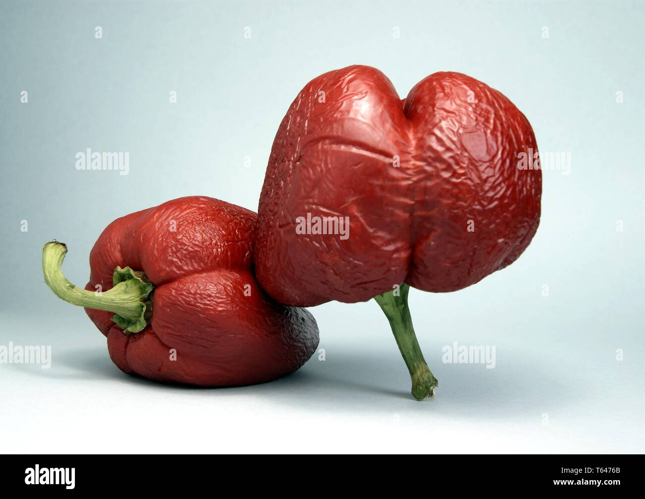Spoiled red pepper - Stock Image