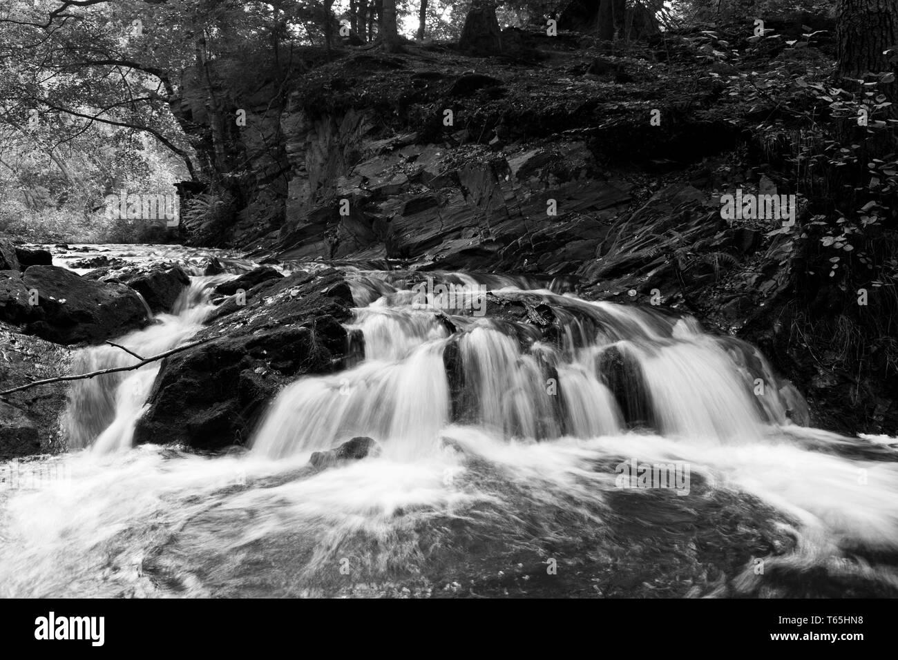 Stream Selke, Harz Mountains, Germany - Stock Image