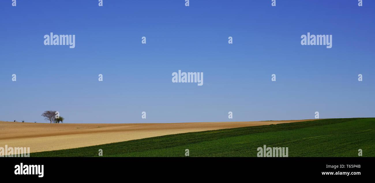 Field in Lower Austria - Stock Image