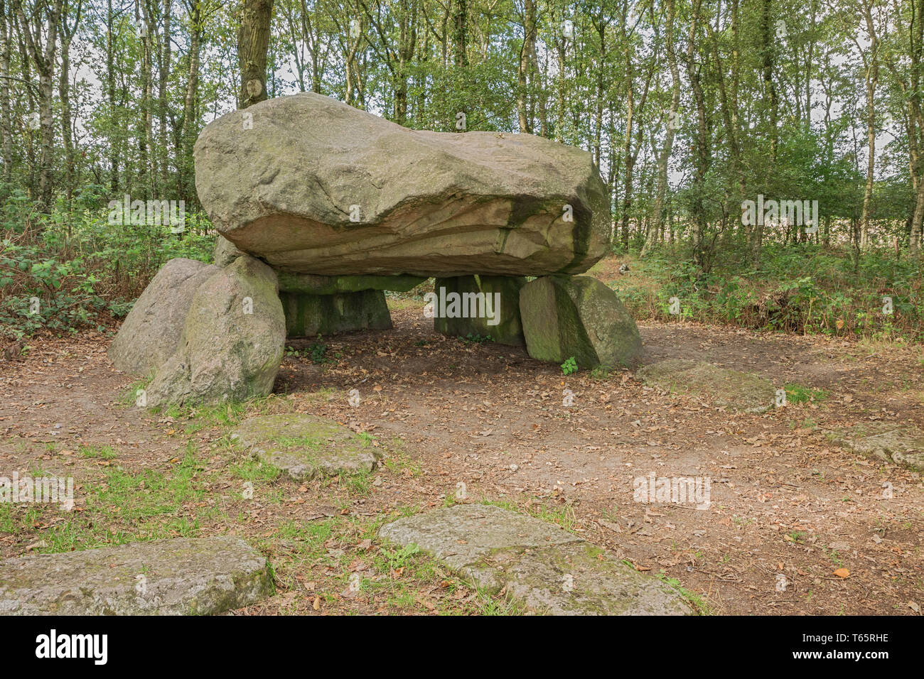 Looking at the inside of Dolmen G1 in the vicinity of Noordlaren - Stock Image