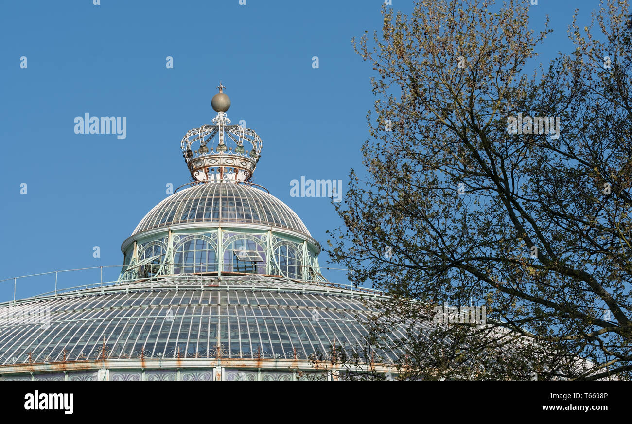The Winter Garden with crown on top, part of the Royal Greenhouses at Laeken. The Castle of Laeken is the official residence of the Belgian monarchy. - Stock Image
