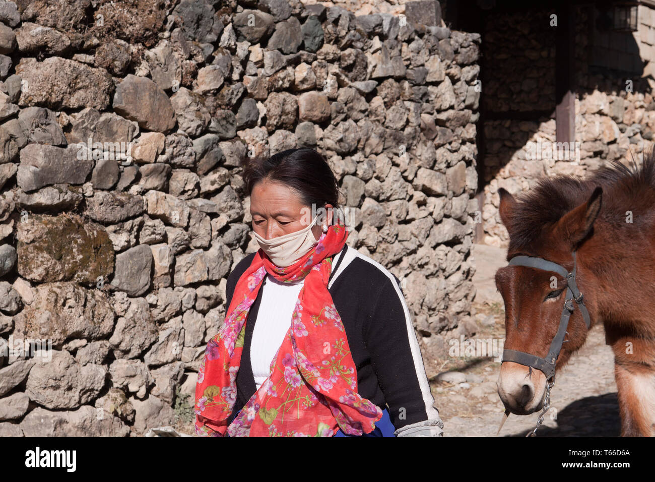 Yuhu village, belonging to the Naxi minority, located about 15 kilometers North of Lijiang Old Town, is the last village of the valley - Stock Image