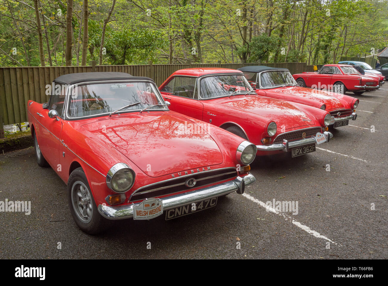 Concors delegance for Sunbeam Tiger vintage sports cars. - Stock Image