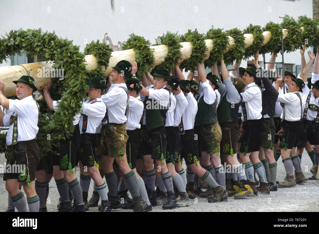 Setting up the Maipole, a bavarian tradition, Germany - Stock Image