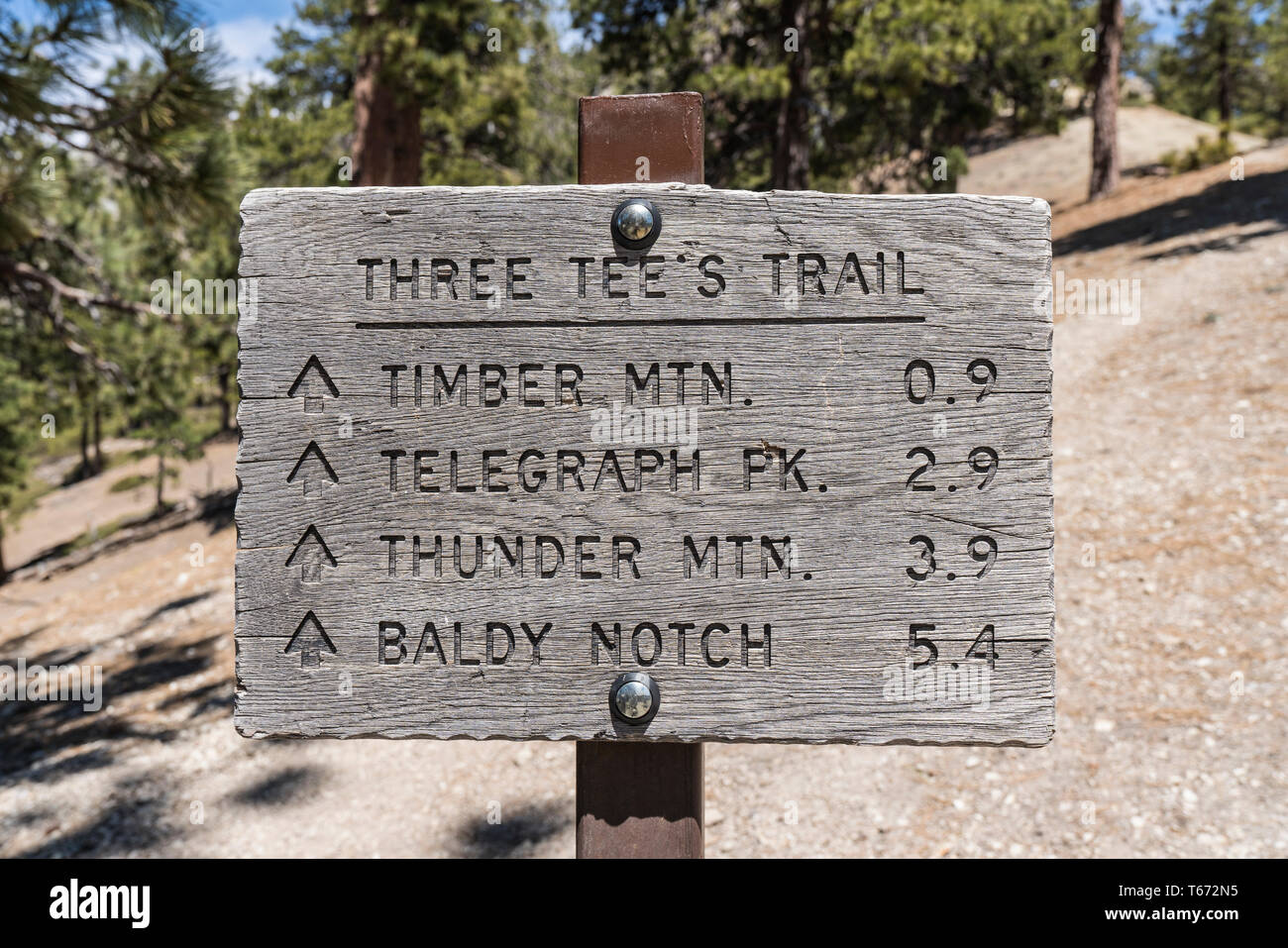 fd484e493e0 Three Tees trail sign near Mt Baldy and Icehouse Canyon in the Angeles  National Forest.