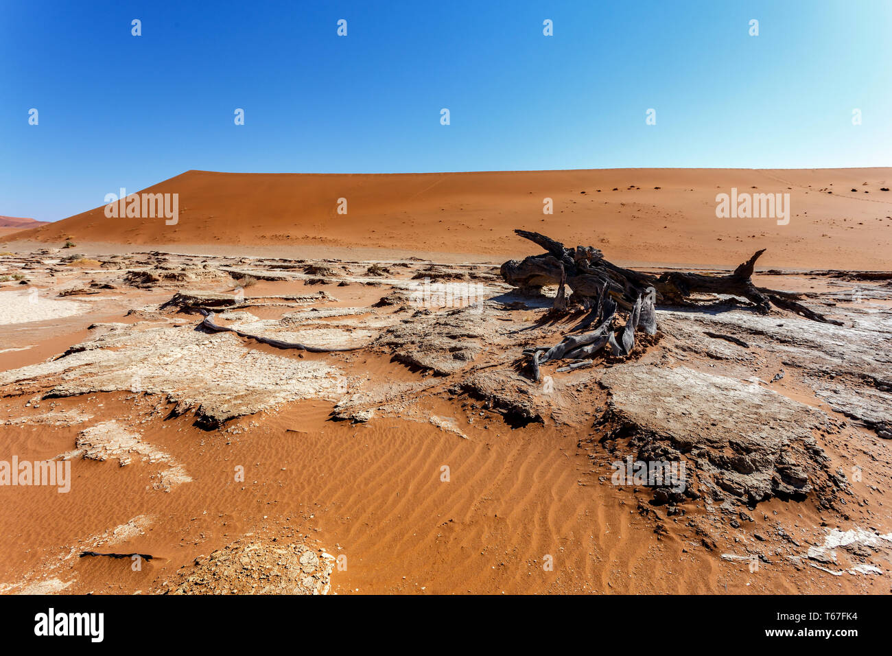 Sossusvlei beautiful landscape of death valley - Stock Image