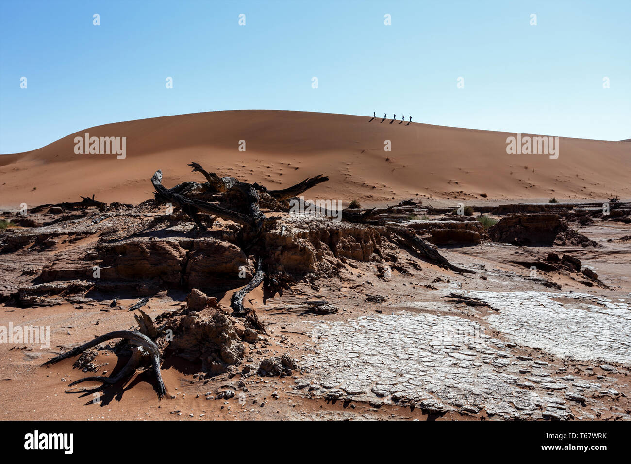 Sossusvlei beautiful landscape of death valley, namibia - Stock Image