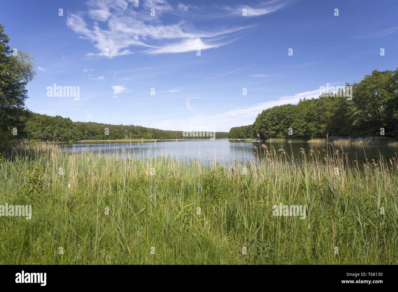 Beautiful Landscape in Uckermark, a Region in northeast Germany, Brandenburg Stock Photo