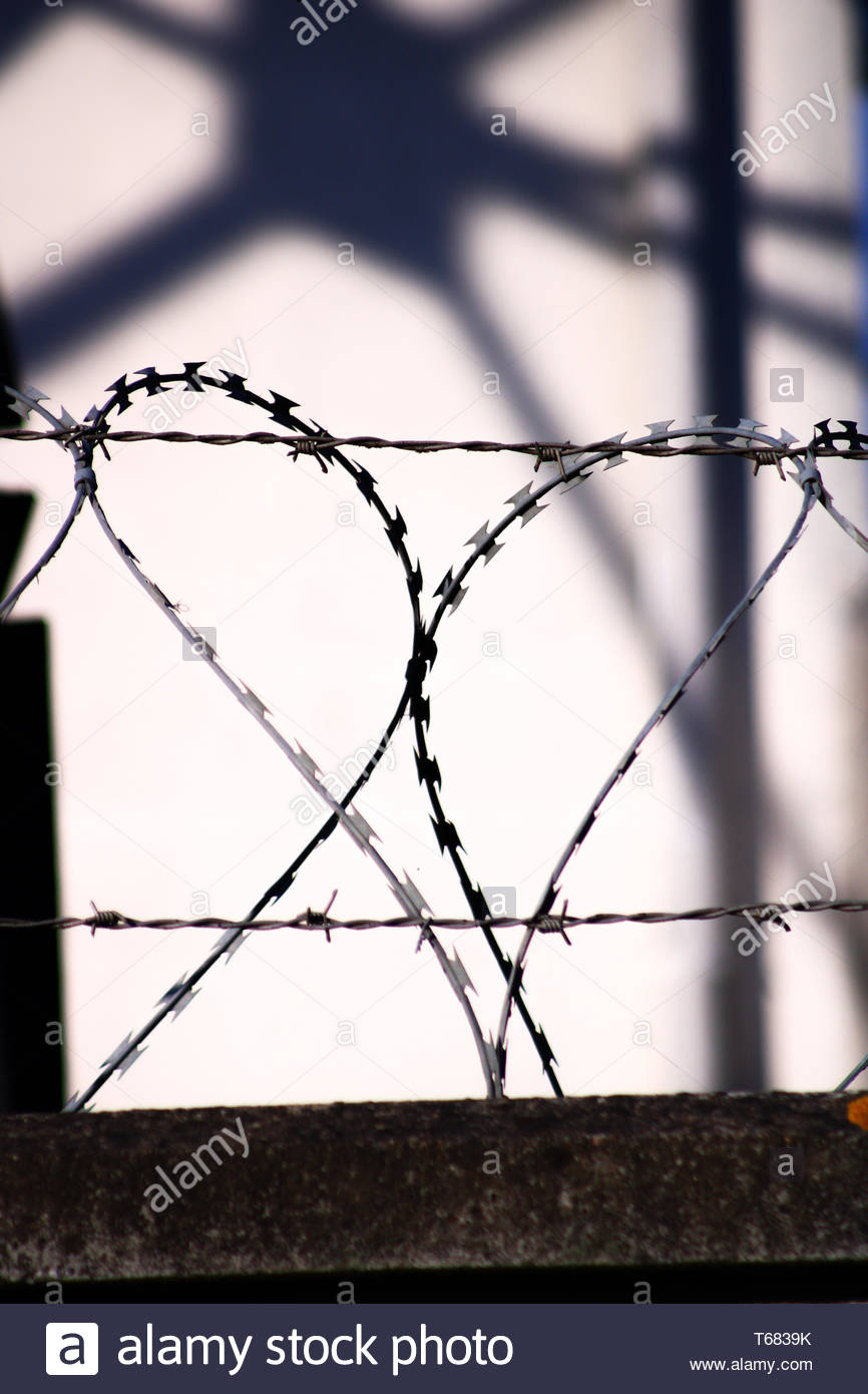Wall surmounted by a system anti intrusion cutting. Barbed wire in the shape of a heart - Stock Image