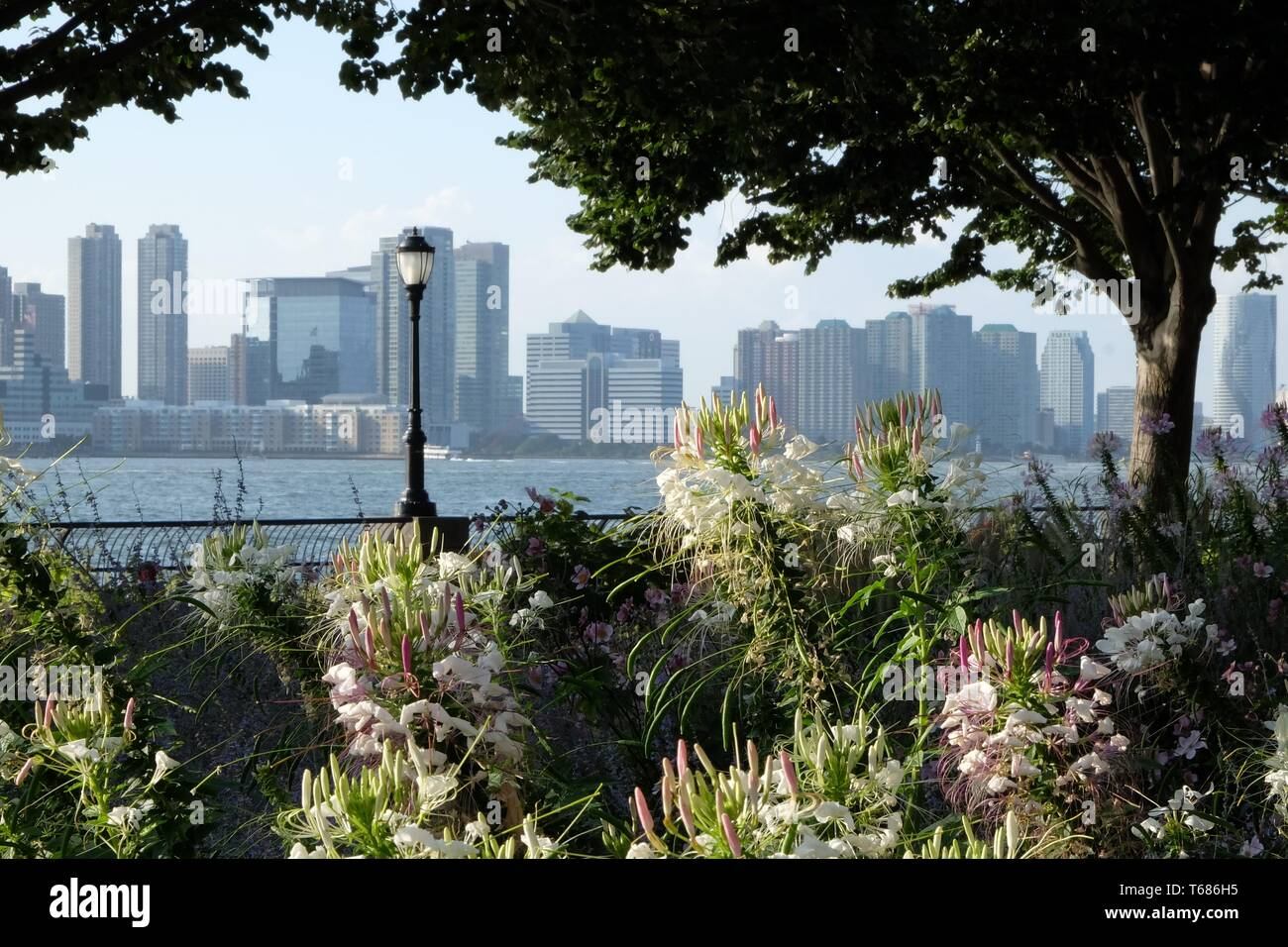 A Picture of Battery Park in Lower Manhattan, NYC Stock Photo
