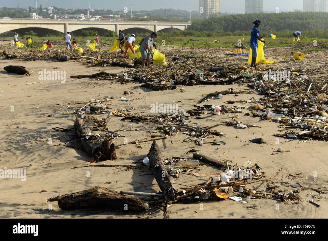 Durban, KwaZulu-Natal, South Africa, plastic pollution, community volunteers collecting waste packaging from beach in Umgeni river estuary, people - Stock Image