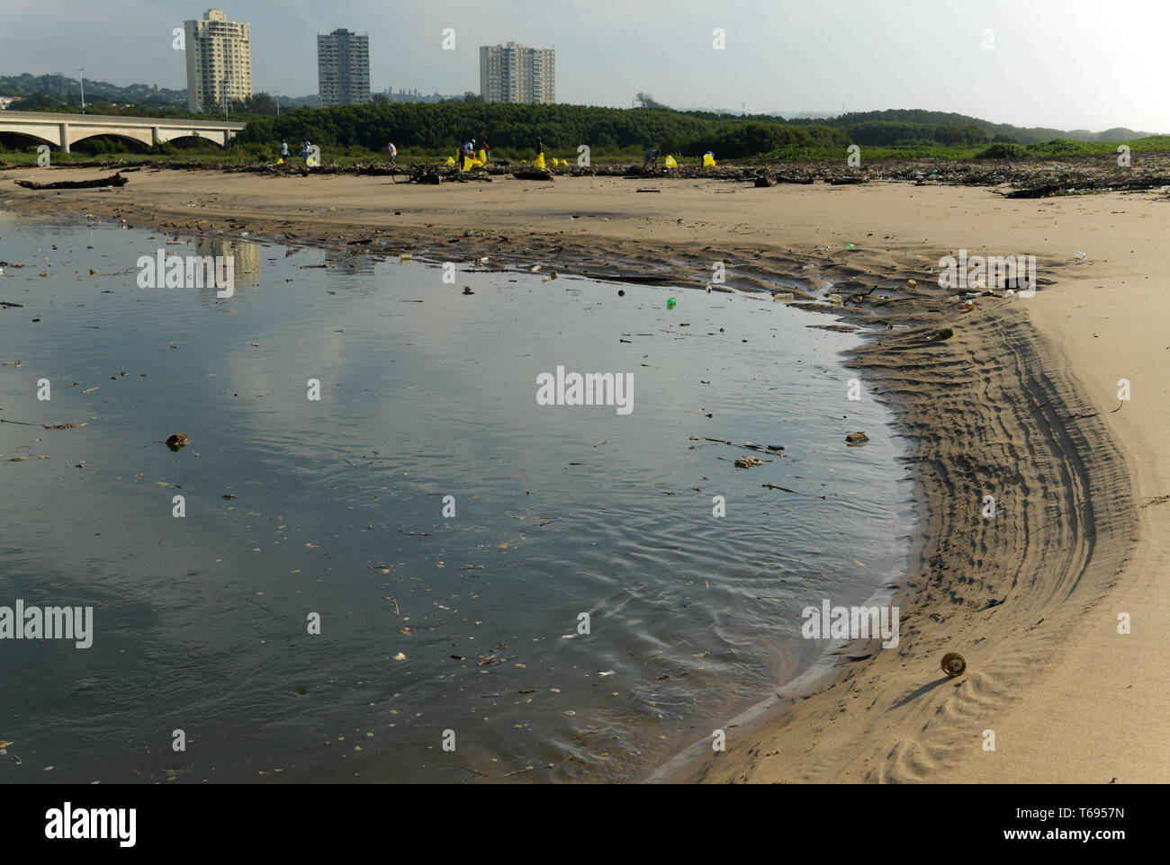Durban, KwaZulu-Natal, South Africa, plastic pollution, community volunteers cleaning waste from tidal zone in Umgeni river estuary, landscape - Stock Image