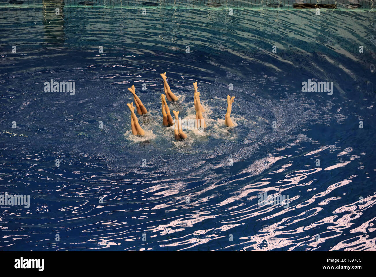 Women#39;s synchronized swimming in the pool - Stock Image