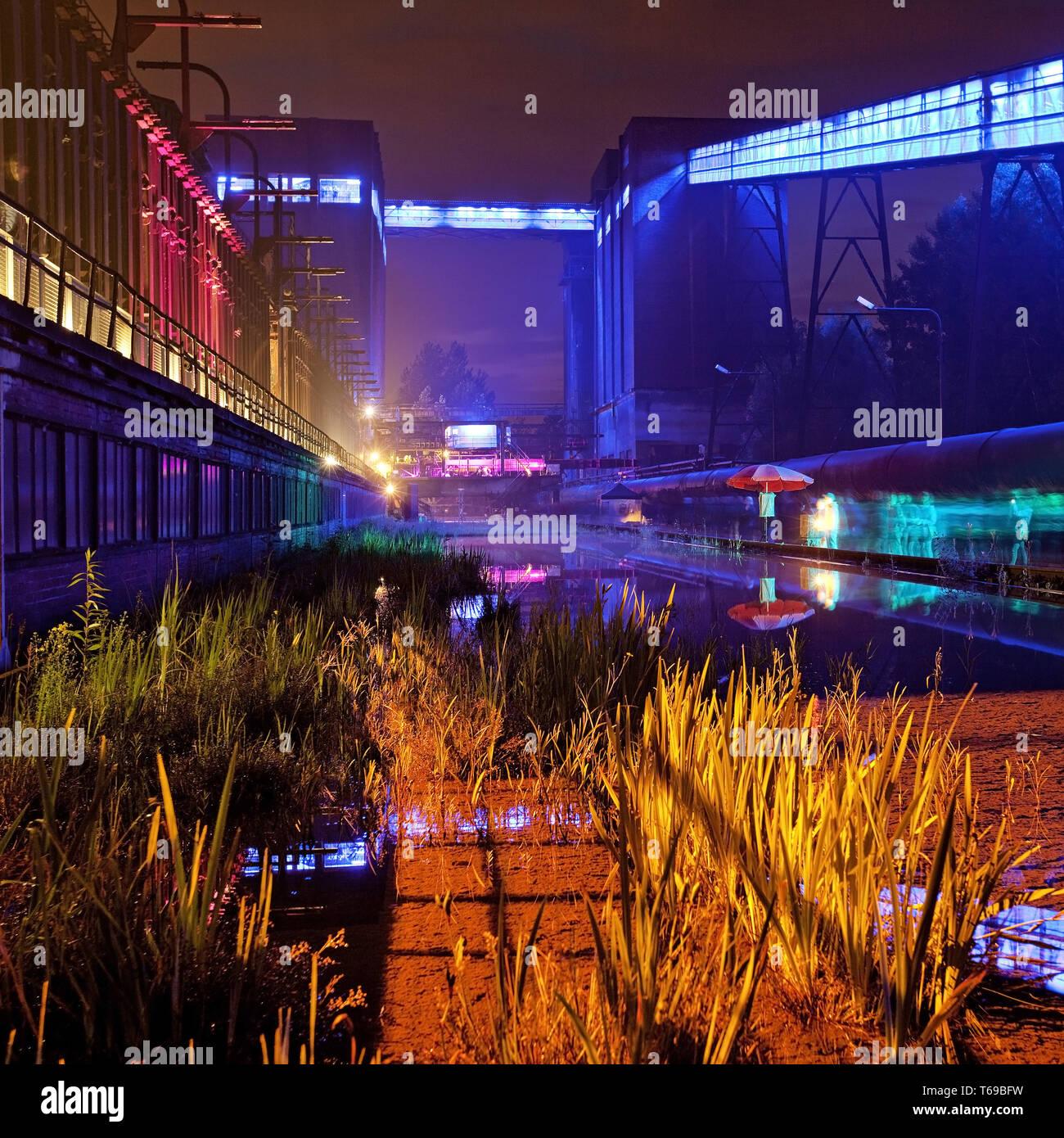 illuminated coking plant Hansa at Extraschicht, Dortmund, Ruhr Area, Germany - Stock Image