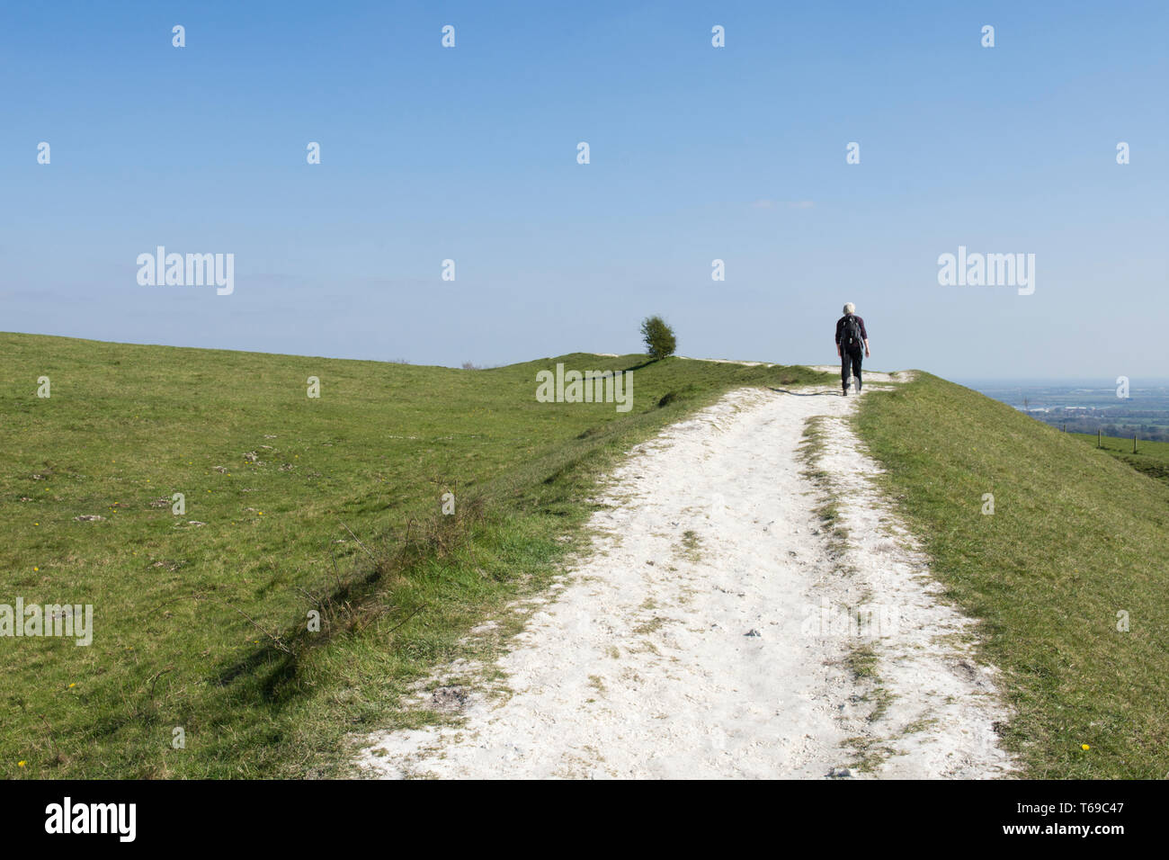 woman walking on path on the Iron-Age hill fort on St. Roche's Hill called the Trundle, Goodwood, Sussex, UK, April,South Downs National Park. Stock Photo