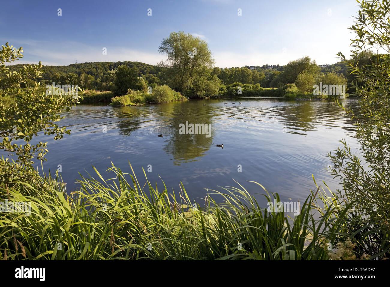 river Ruhr in Bochum, Germany, North Rhine-Westphalia, Ruhr Area, Bochum - Stock Image