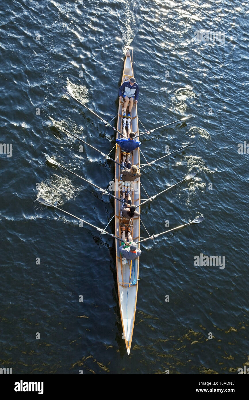 coxed fours on Ruhr river, Germany, North Rhine-Westphalia, Ruhr Area, Hattingen - Stock Image