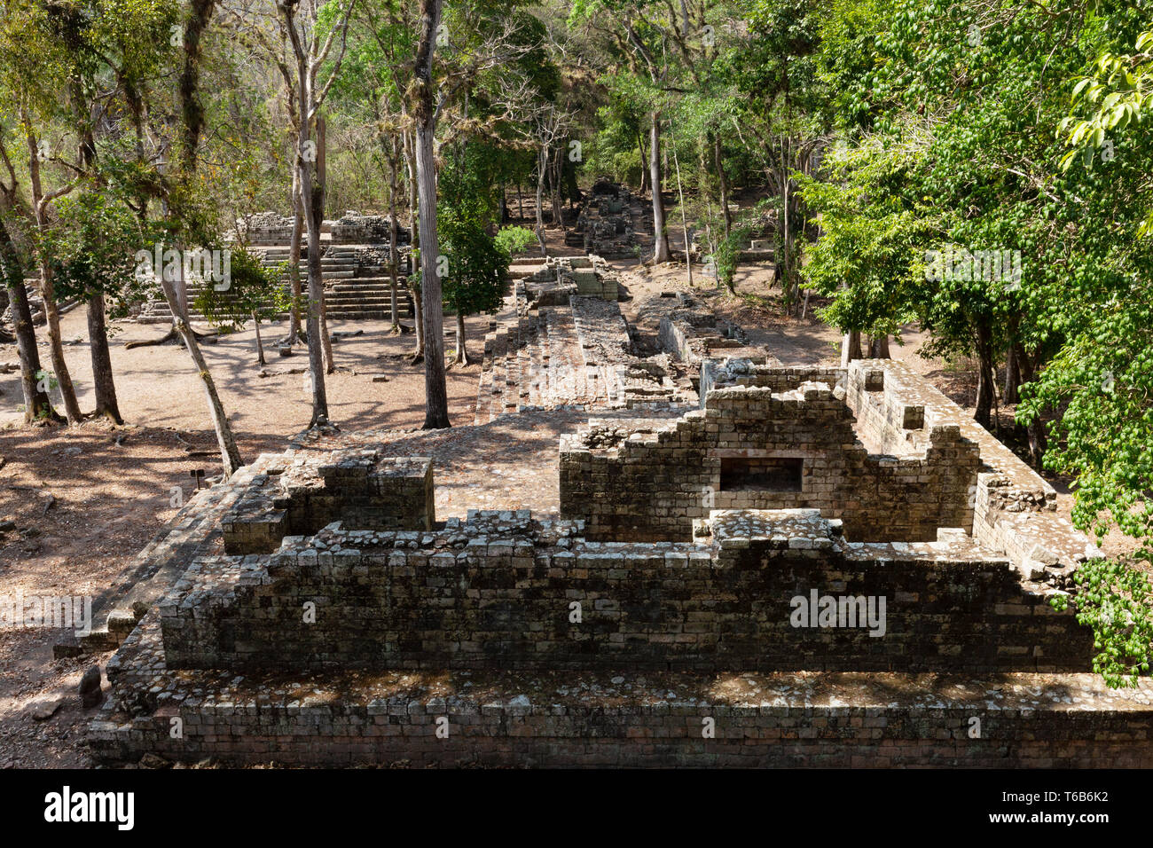 The Residential Courtyards;  ancient mayan ruins at Copan, Honduras Latin America Stock Photo