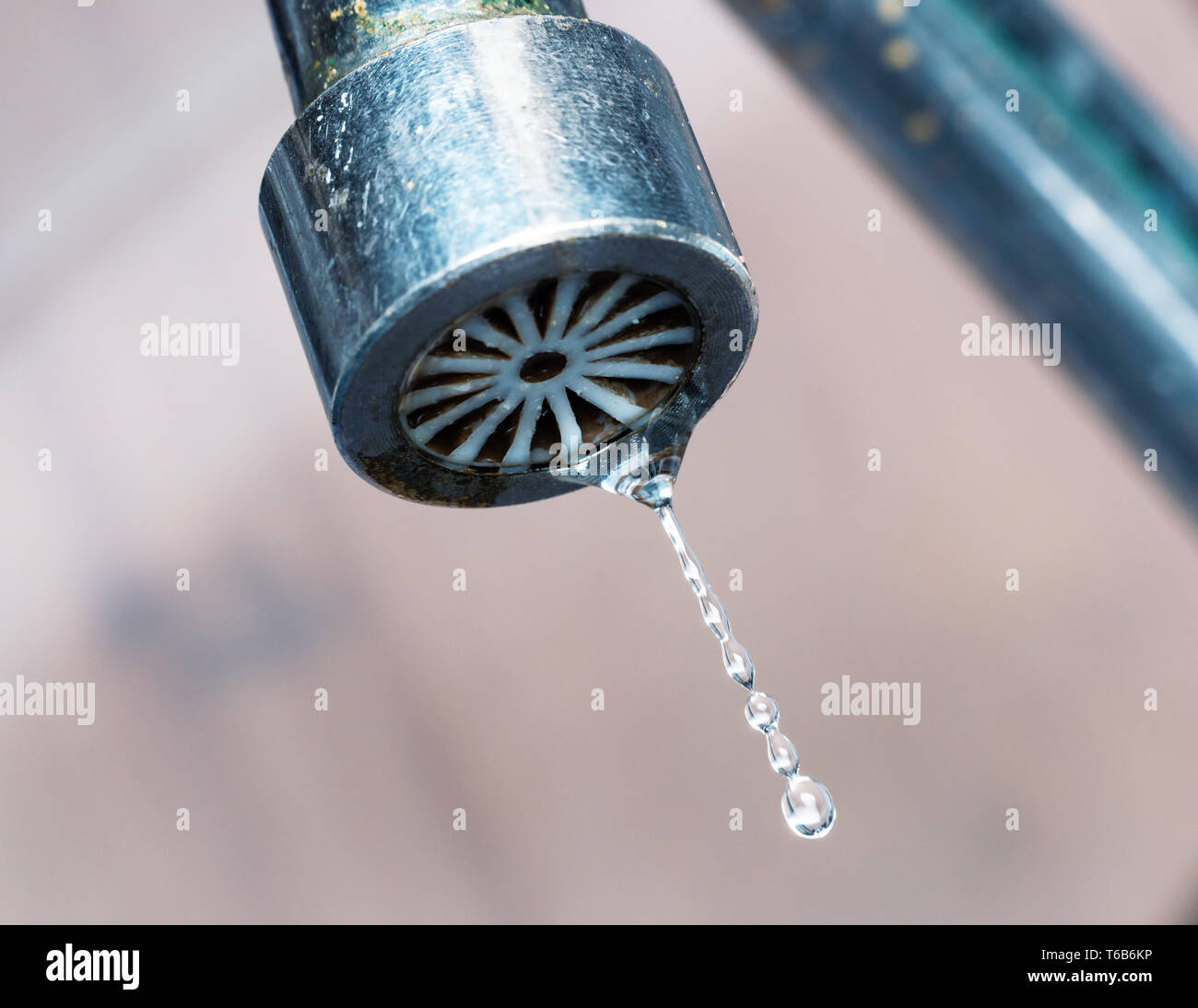 Macro shot of an old kitchen tap dripping, wasting water concept - Stock Image