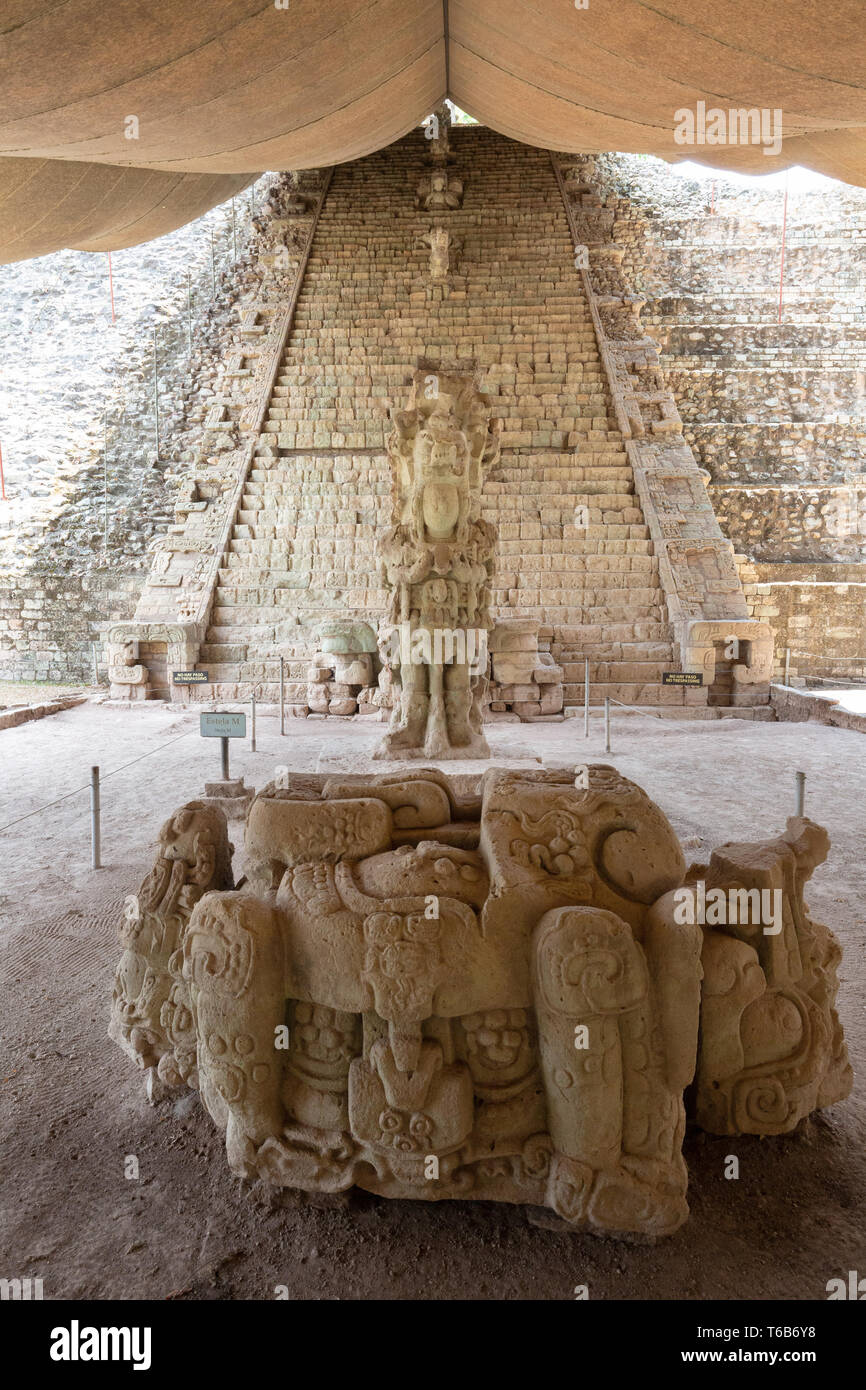 Copan Honduras Central America - ancient Mayan archaeological site; Carved stone, Stela M and the Hieroglyphic Stairway, Copan Honduras Latin America - Stock Image