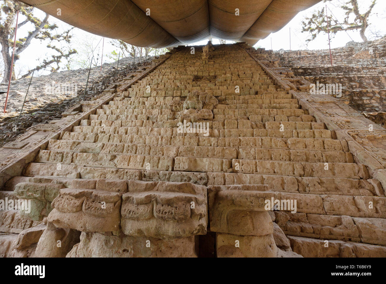 Maya ruins - the mayan Hieroglyphic Stairway at the UNESCO World heritage site of Copan, Honduras Central America - Stock Image