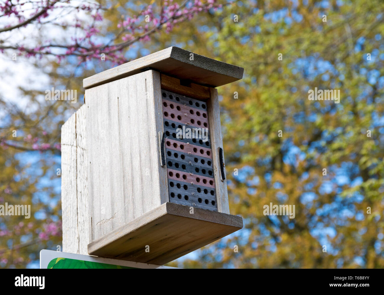 'Bee condo' erected in a park for Blue Orchard Mason bee.  Man made mason bee house, homes or habitat. - Stock Image